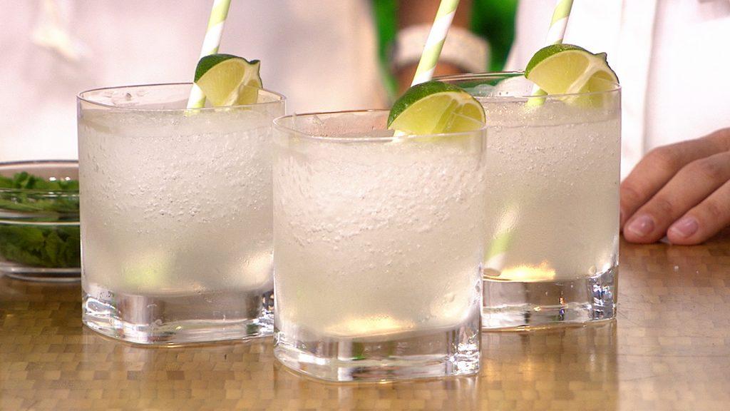 imagen gin tonic coctel