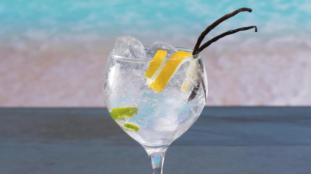 tragos faciles gin tonic imagen